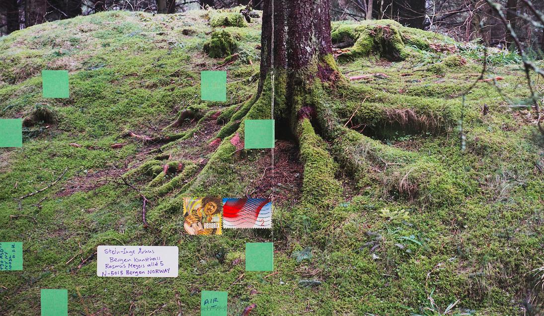 Moyra Davey. Hemlock Forest, 2016. Courtesy of E-Flux