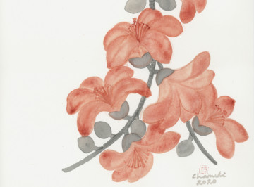 Flower Bloom, Flowers Wither Away, Flowers Bloom Again: Chameli Ramachandran